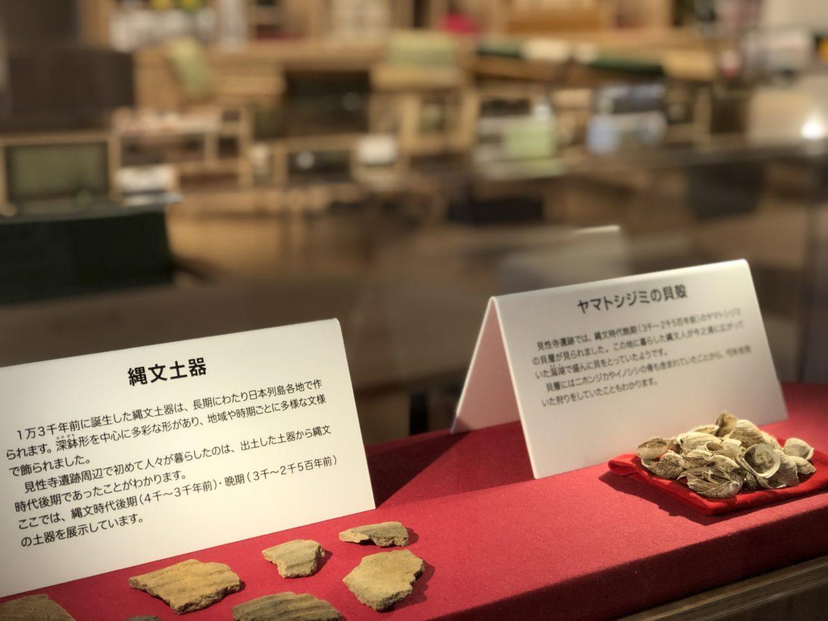 縄文土器の展示